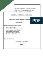 Monografìa sobre el sindrome de impacto femoro-acetabular