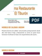 MODELO CALIDAD - TIPO SW.pdf