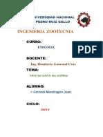 ARDILLAS ETOLOGIA.docx