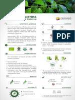PROEC_FS2017_GUAYUSA_ING.pdf