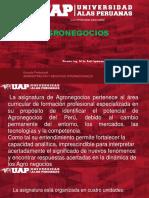 1. INTRODUCCION - DIAGNOSTICO DE LA AGRICULTURA PERUANA.pptx