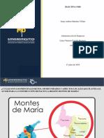 Act. 5 La Paz y Sus Desafios Locales