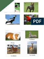 animales nativos del peru.docx