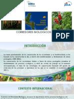 corredro biologico.pdf