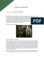 La flora y la fauna de Sudamérica.docx
