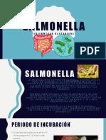 Salmonela Presentacion