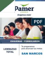 FORMULARIO PAMER.pdf