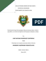 Diaphorina citri kwayana Control Biológico.pdf