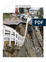 Effects of earthquake.docx