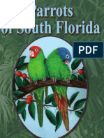 Parrots of South Florida by Susan Allene Epps
