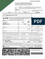 WORLD SLICE REI HOLDINGS LLC - PUBLIC INFO REPORT 1-2019.PDF