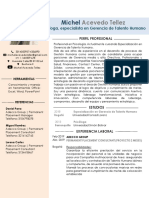 MICHEL ACEVEDO T HV.docx