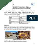 estudio de proceso de humus de lombriz 06.pdf