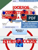 PSICO-12-PROCESOS COGNITIVOS.pptx