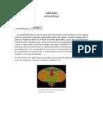 aplicaciones-esfera.docx