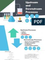 Upstream and Downstream Processes