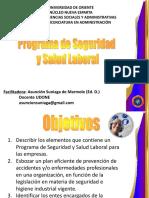 Programa de Seguridad y Salud Laboral (nt-01-2008)