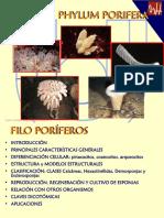 T2 Poríferos.pdf