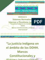 La Justicia en El Ámbito de DDHH