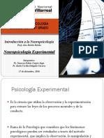 Neuropsicologia Experimental