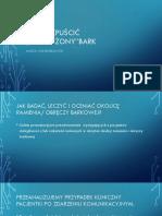 BARK.pdf