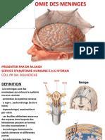 C38. Méninge.pdf