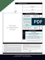FIV León 2019_Formulario de Pago