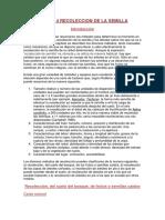 Capítulo 4 RECOLECCION DE LA SEMILLA.docx