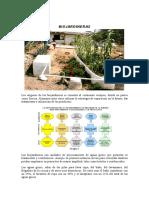 Biojardinera.pdf