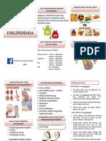 Leaflet-Dislipidemia-Silvy.docx