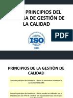 8 principios de SGA.pdf