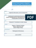 TFM - E. FERNANDEZ DE CASTRO-TESIS.pdf