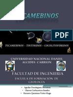 grupo 4 TECAMEBINOS.pptx