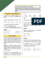 s10 Guia de Estudio y Hoja de Trabajo_sistema de Ecuaciones_2019_1