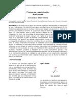 Plantilla de Informe 7.Docx - Documentos de Google