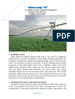 Maize-Cultivation-in-Pakistan1.pdf