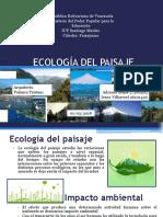 ECOLOGÍA DEL PAISAJE.pptx