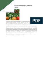 Deficiencias y Excesos Nutricionales en Tomate Excelente