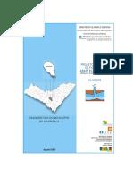 Aspectos de Arapiraca.pdf