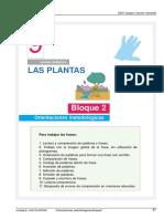 bloque2-9 las plantas.pdf
