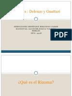 rizomaylineas-140212014623-phpapp02