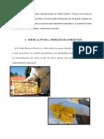 Avance Paola (1)