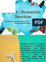Domestic Tourism