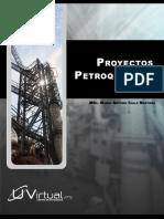 172794969-Proyectos-petroquimicos