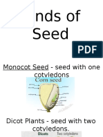 Kinds of Plants and Seeds