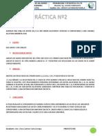 PRACTICA CARLOS.pdf