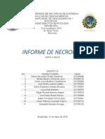 CCP VISITA A INACIF C3 GRUPO 1docx.pdf