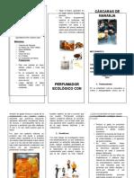 tríptico proyecto Alvaro.docx