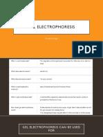 Gel Electrophoresis.pptx