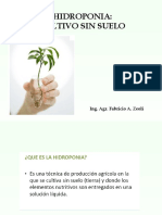 hidroponia-111219200939-phpapp02